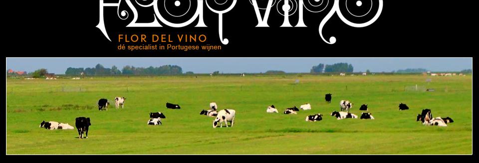Flor Del Vino – Dé Specialist in Portugese Wijnen